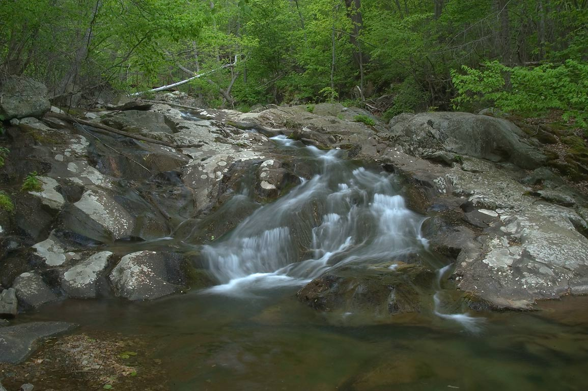 A stream of Whiteoak Canyon near Skyline Dr.. Skyland, Virginia