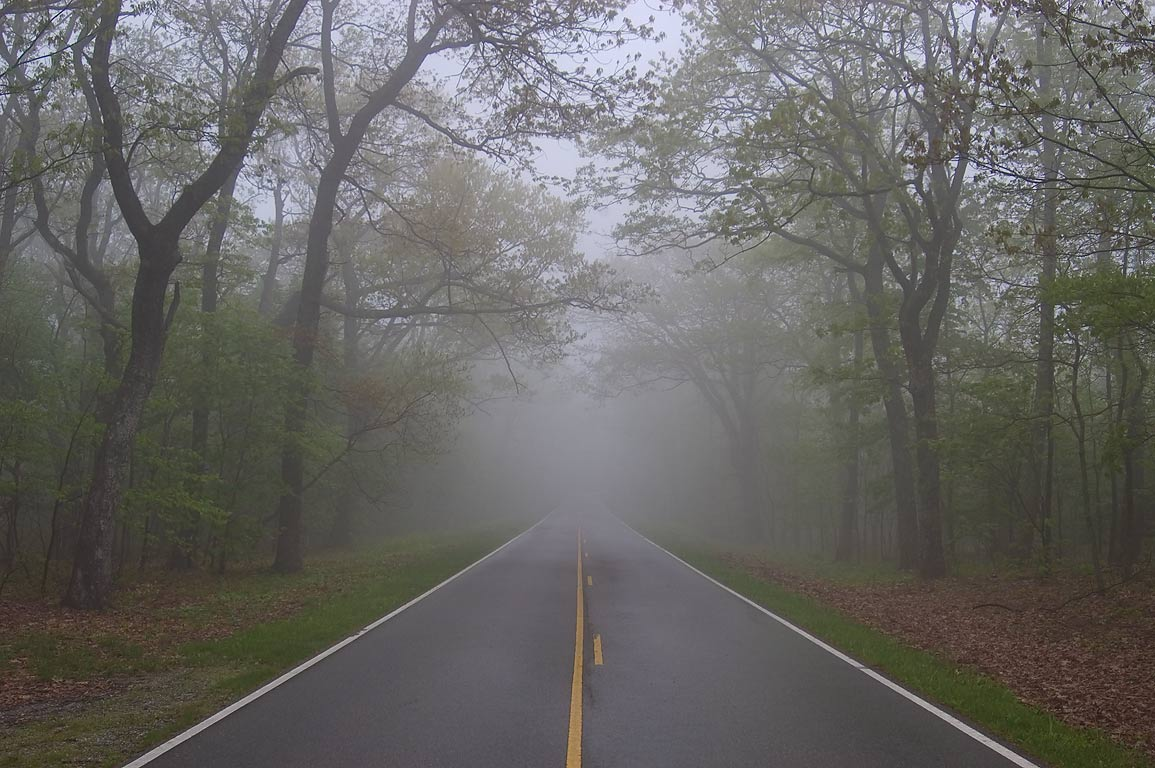 Skyline Dr. in fog in the area of Loft Mountain. Virginia