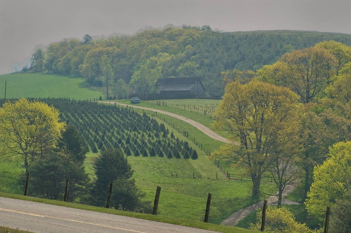 A farm at mile 25 near Blue Ridge Parkway near Spy Run Gap. Waynesboro, Virginia