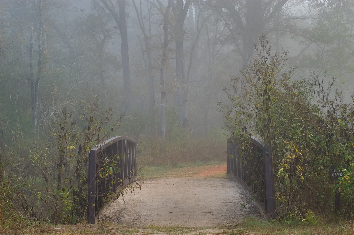 Bridge of Deer Run Trail in fog in Lick Creek Park. College Station, Texas