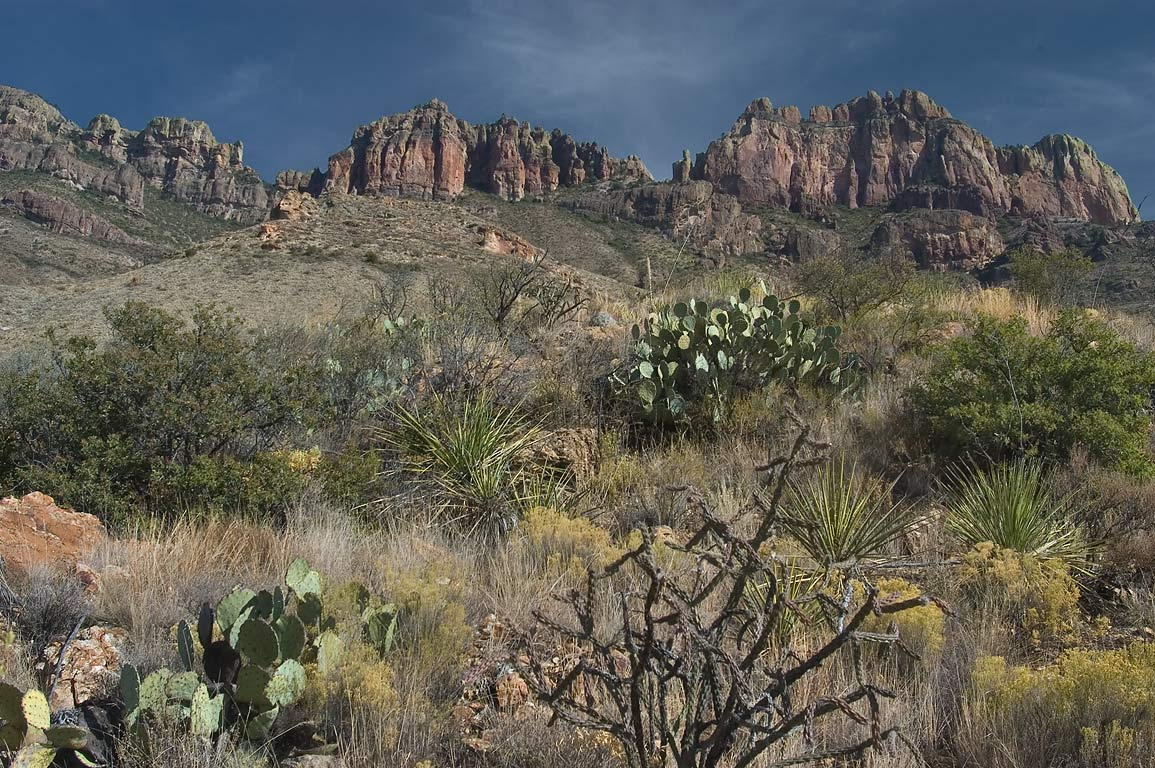 Crown Mountain, view from lower part of Juniper...Trail. Big Bend National Park, Texas