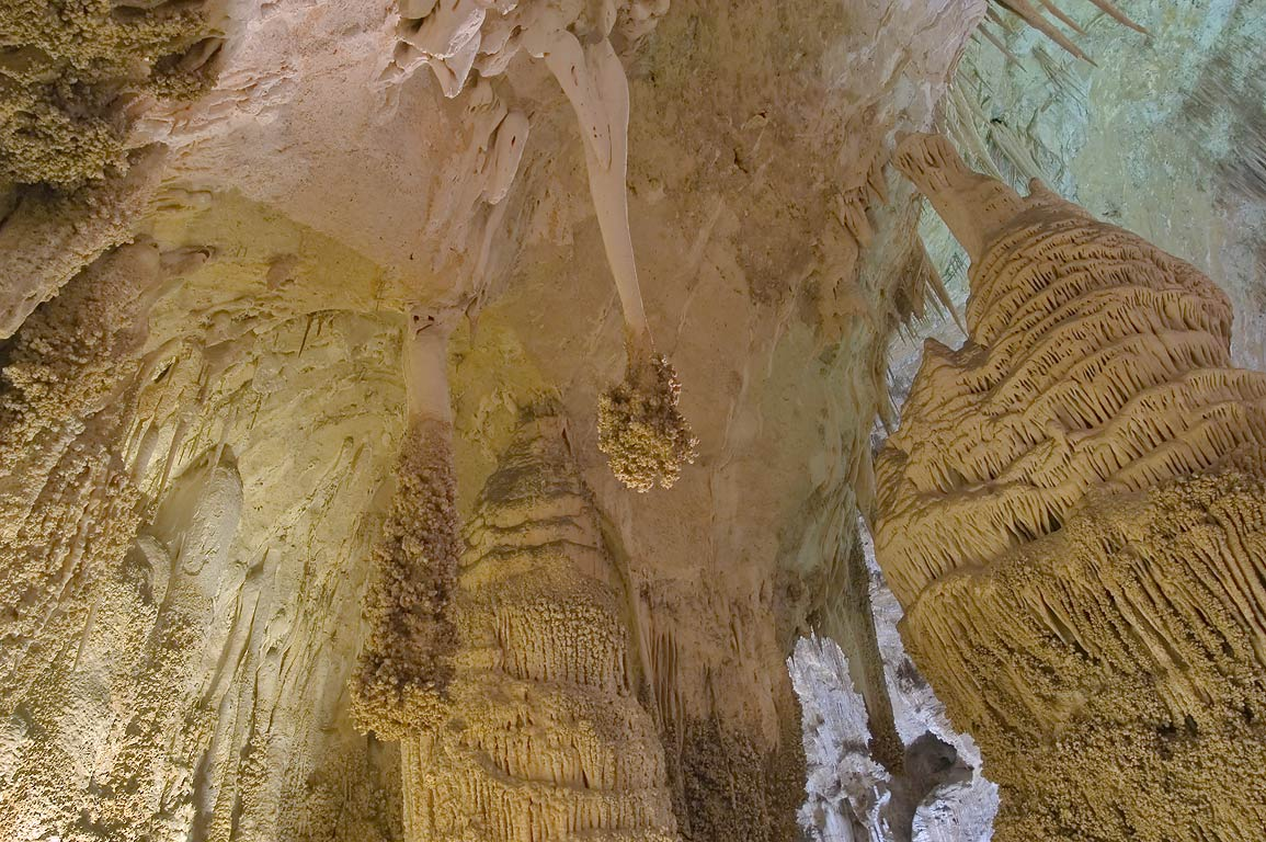 Lions Tails hanging in Big Room of Carlsbad Caverns. New Mexico