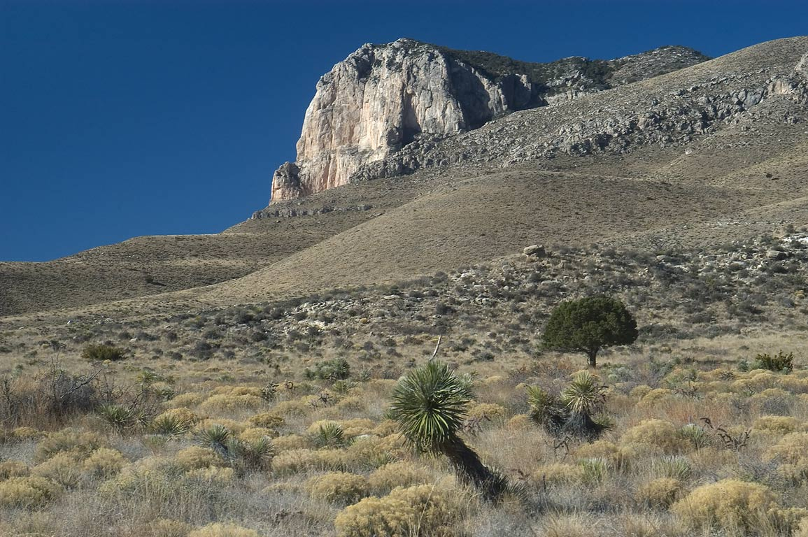 View from beginning of El Capitan Trail in Guadalupe Mountains National Park. Texas