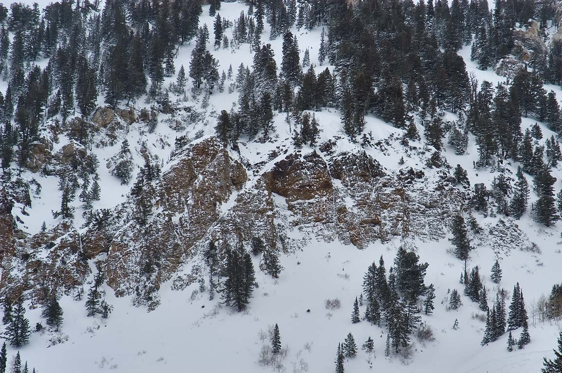 Cliffs of Superior Peak, view from Chickadee place in Snowbird Ski Area. Utah