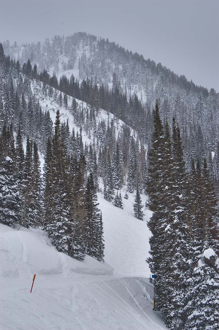 Easy St. in area of Thunder Alley in Snowbird Ski Area. Utah