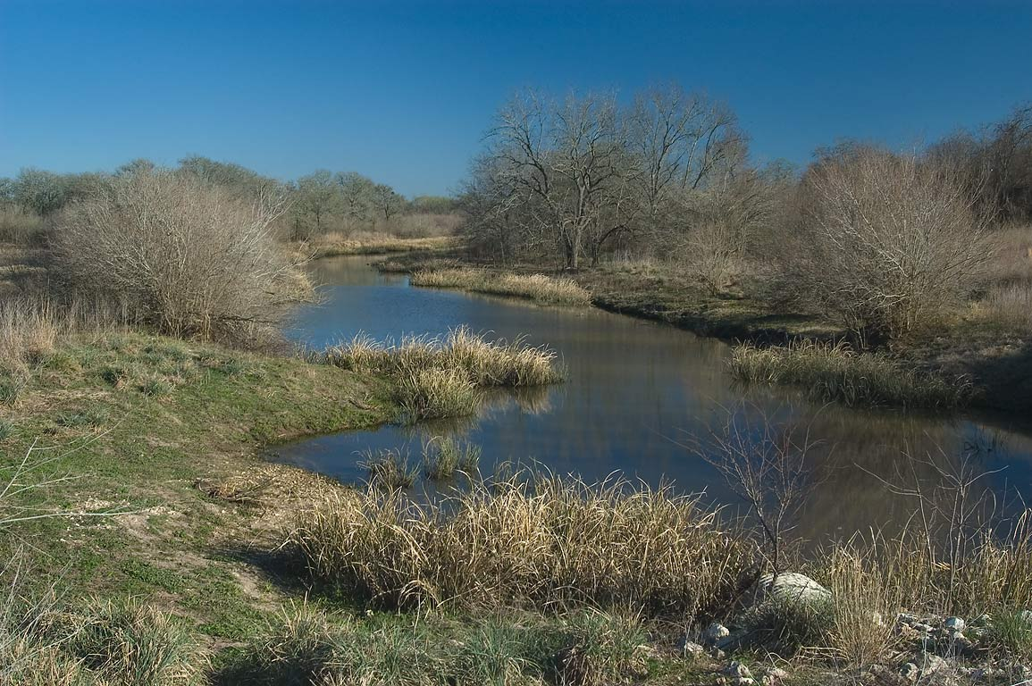 Channel between Flag Pond and Lake Somerville, view from a loop trail. Somerville, Texas