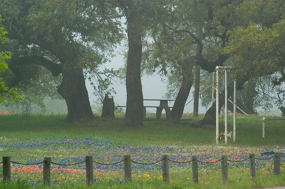 Picnic table in Old Baylor Park in fog. Independence, Texas