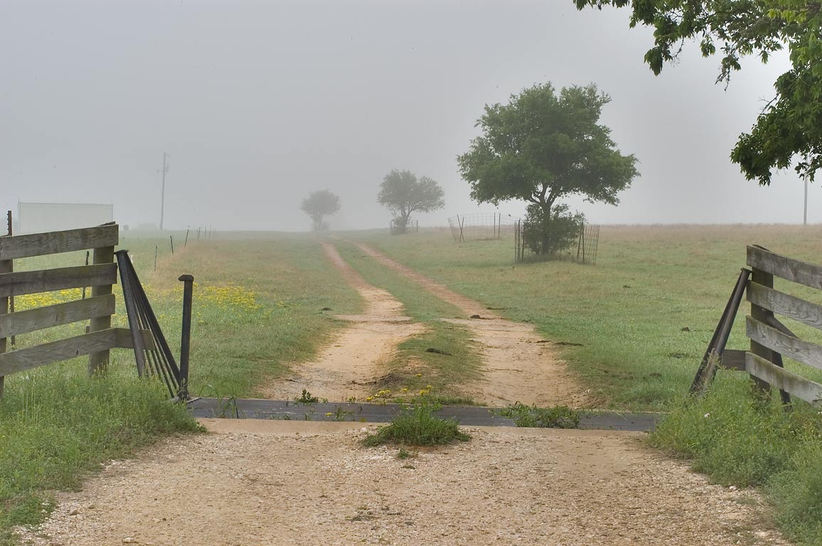 Ranch road in mist, view from Old Navasota Rd...Hill Rd.. North from Brenham, Texas