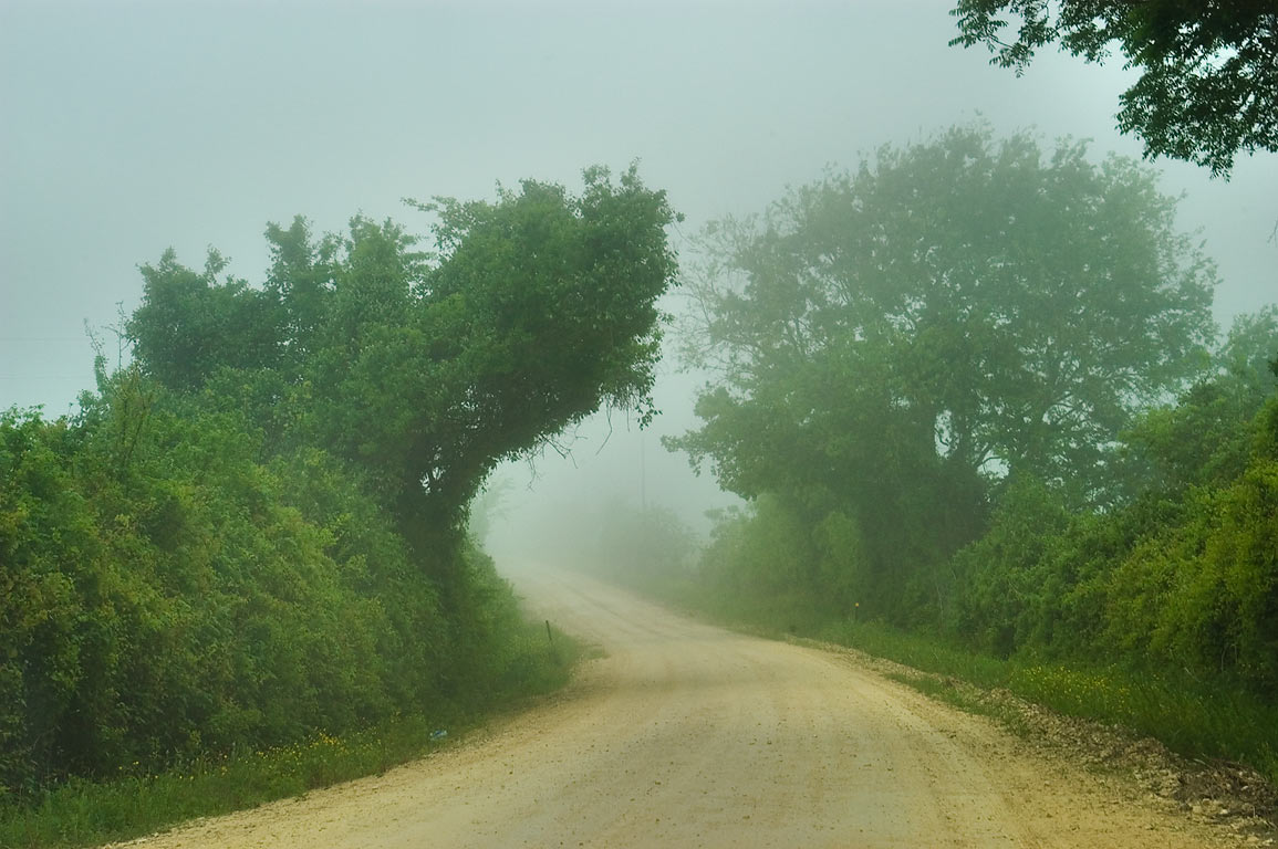 Clay Creek Rd. in fog, east from Gerke Rd.. Independence, Texas