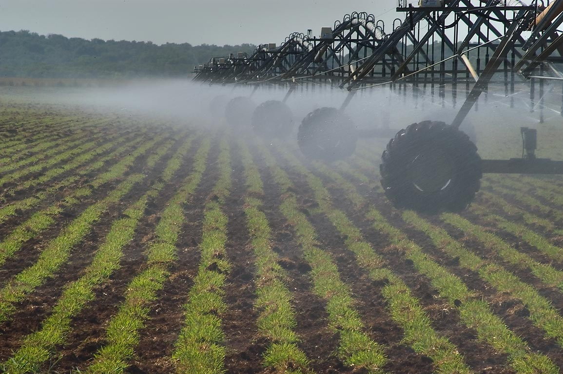 Water sprinkling by irrigation system over an...CR 443 north from Independence. Texas