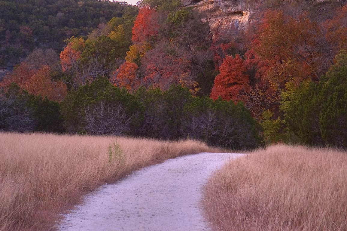 East Trail on a grassy terrace in Lost Maples...close to parking. Vanderpool, Texas