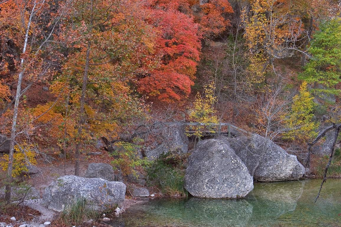 Rocks, a pond and a foot bridge of Maple Trail...State Natural Area. Vanderpool, Texas
