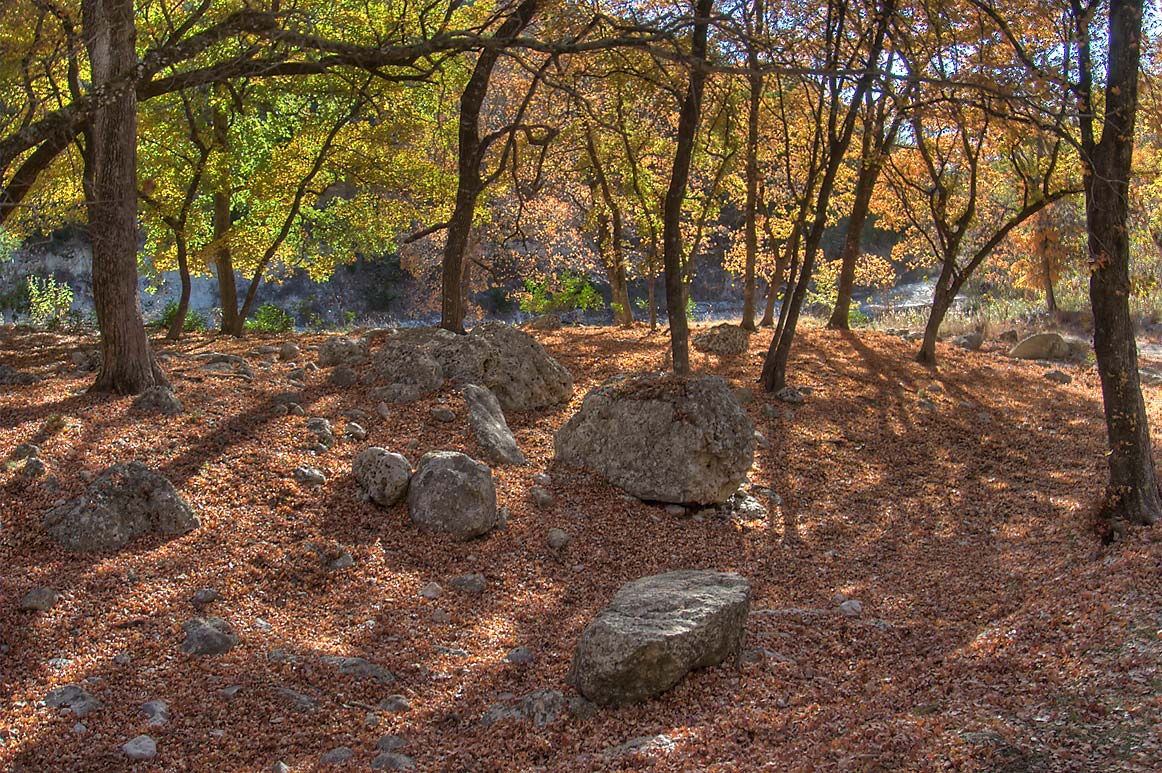 Rocks and Can Creek from western section of East...State Natural Area. Vanderpool, Texas