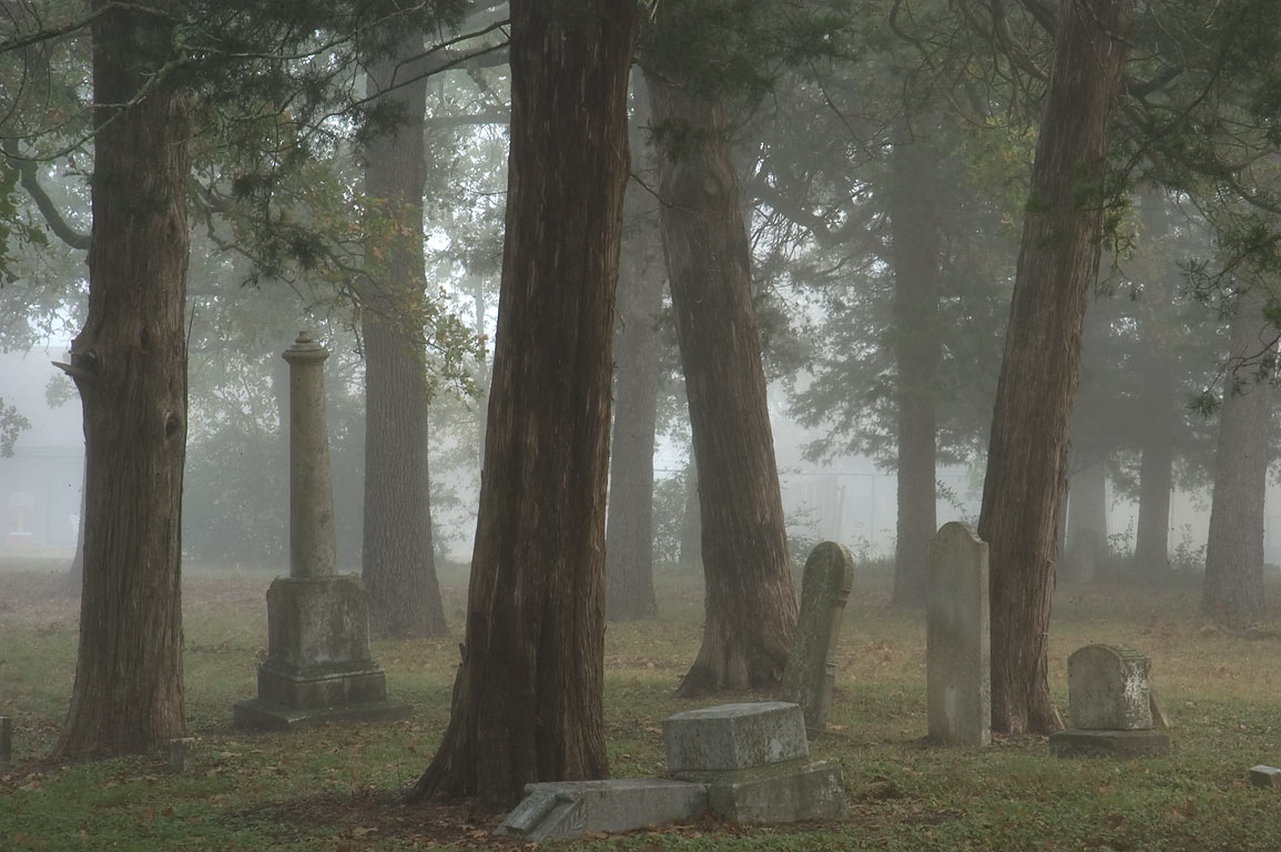 Tombs and trees of Boonville Cemetery in fog. Bryan, Texas
