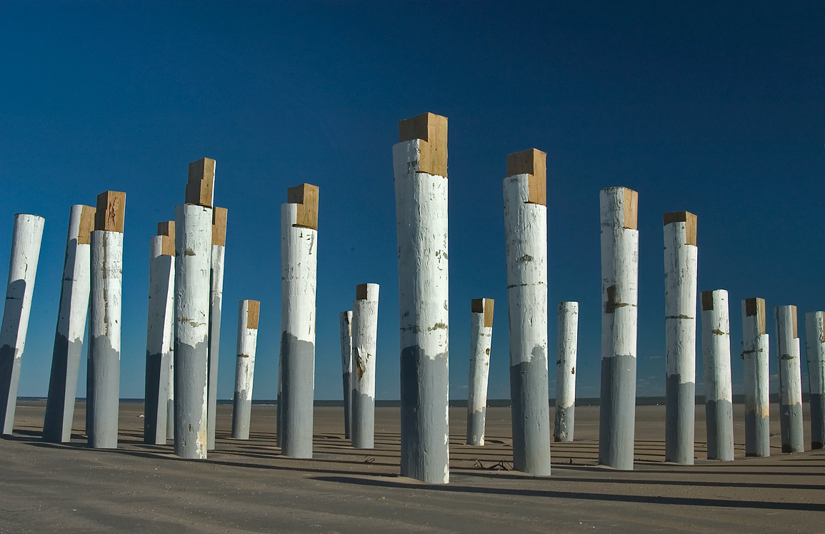 "Group of ""totem poles"" remained from a structure...to Beachtown. Galveston, Texas"
