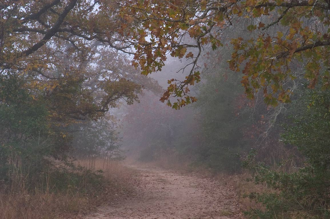 Post Oak Trail in Lick Creek Park. College Station, Texas