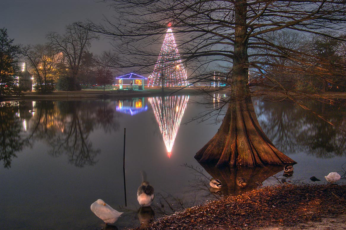 Lake with a cypress and Christmas show in Central Park. College Station, Texas