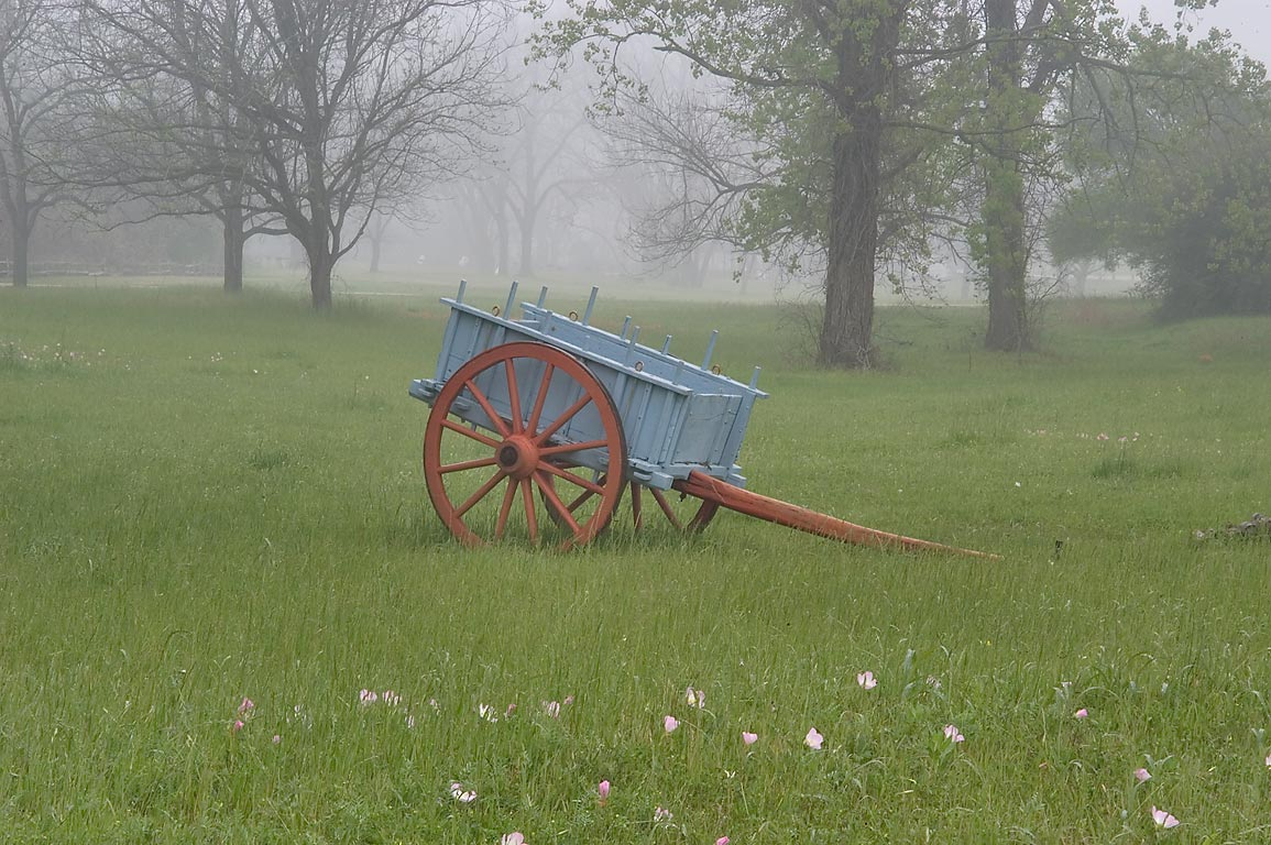 Carriage in mist in Washington-on-the-Brazos State Historic Site. Washington, Texas