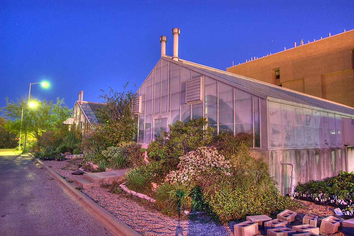 Greenhouses at morning in TAMU Holistic Garden in...M University. College Station, Texas
