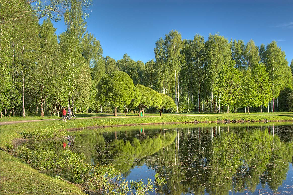 Pond near east border of Sosnovka Park. St.Petersburg, Russia