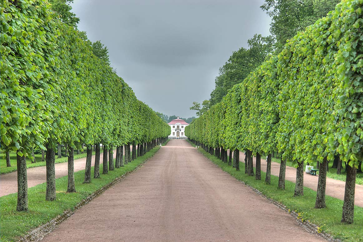 Alley towards Marli Palace in Peterhof (Petrodvorets), near St.Petersburg. Russia