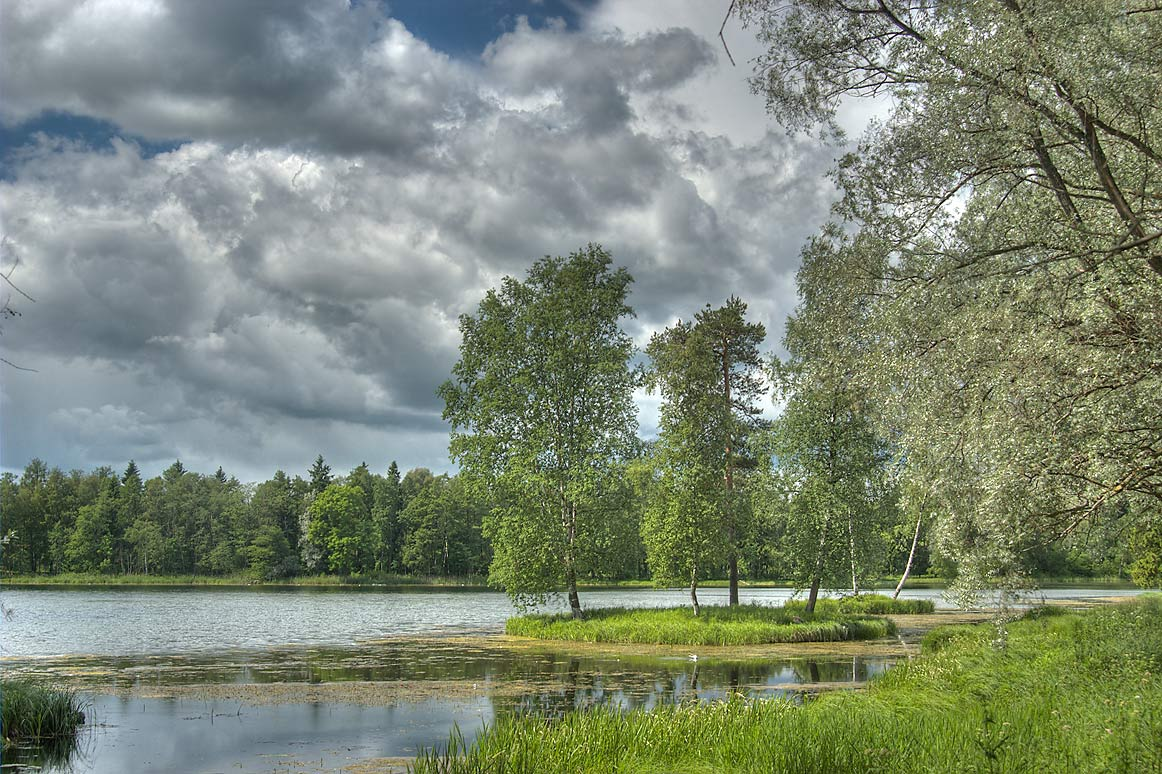 North-east shore of Beloe Lake in Gatchina Park...a suburb of St.Petersburg, Russia