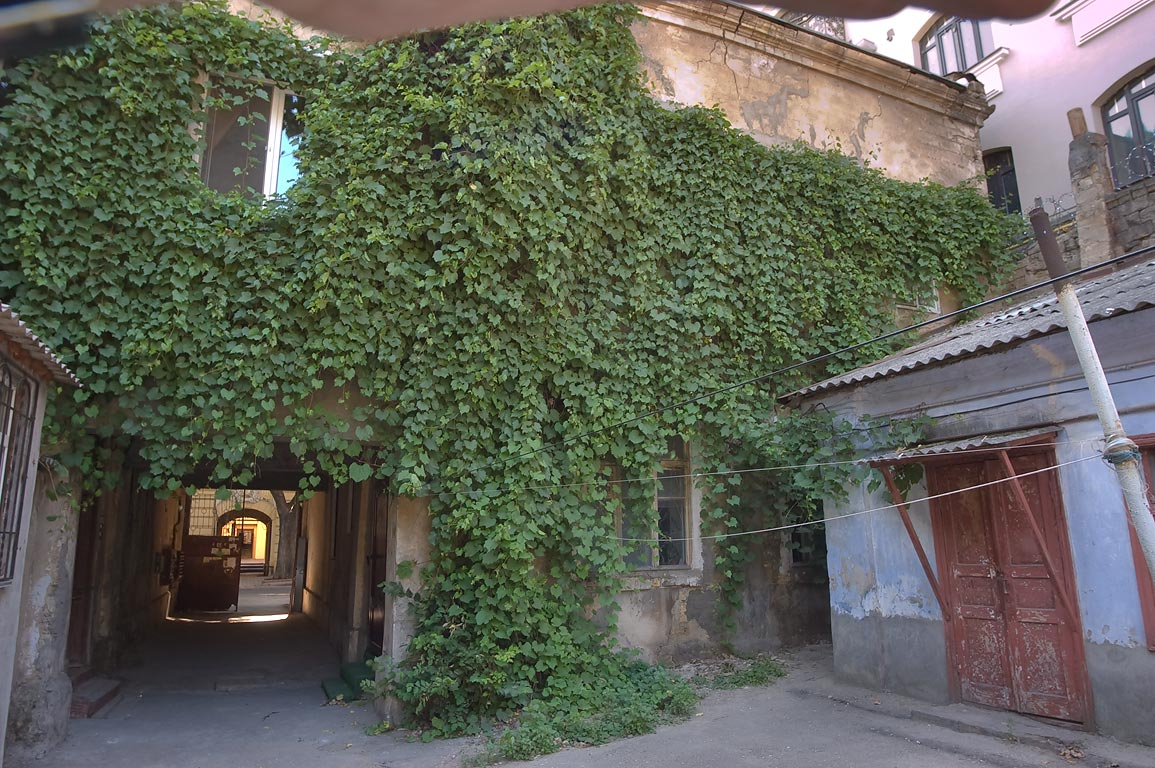 Courtyard with ivy at 62 Marazlievskaya St.. Odessa, Ukraine