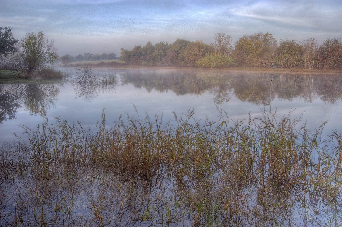 A pond at morning in Washington-on-the-Brazos State Historic Site. Washington, Texas
