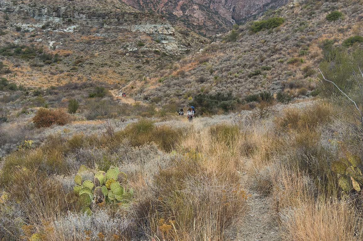 Switchbacks of Blue Creek Trail. Big Bend National Park