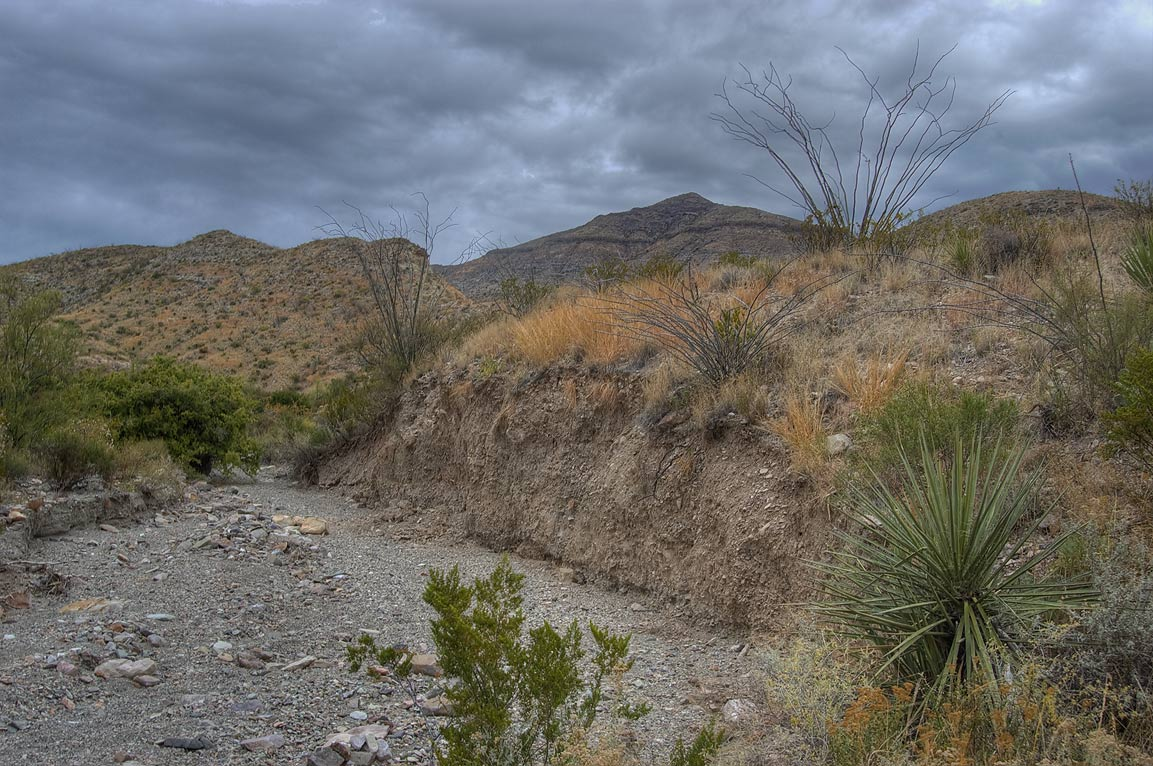 Sandy washes of Blue Creek Canyon near Homer Wilson Ranch. Big Bend National Park