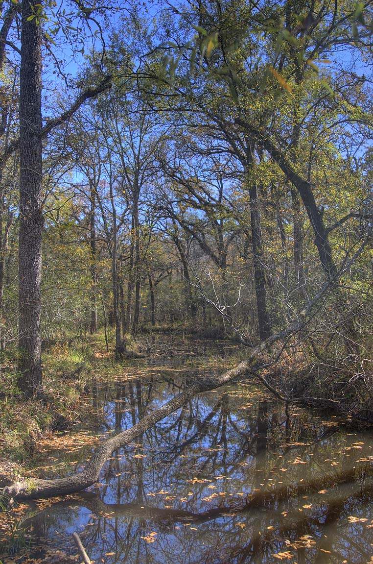 Oxbow near Deer Run Trail in Lick Creek Park. College Station, Texas
