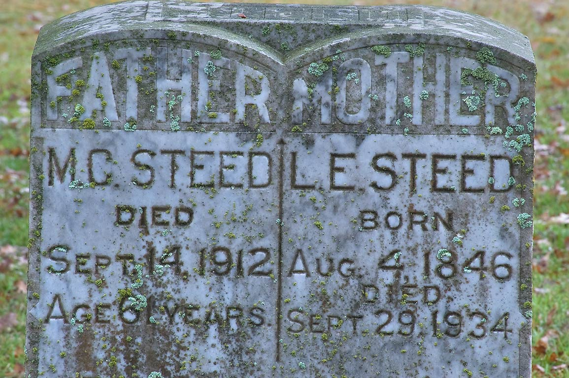 Tombs of M. C. and L. E. Steed in Boonville Cemetery. Bryan, Texas