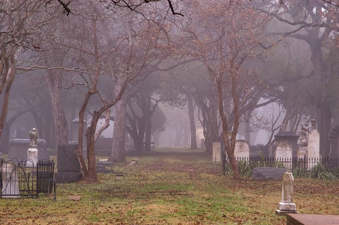 Alley of Calvert Cemetery in fog. Calvert, Texas