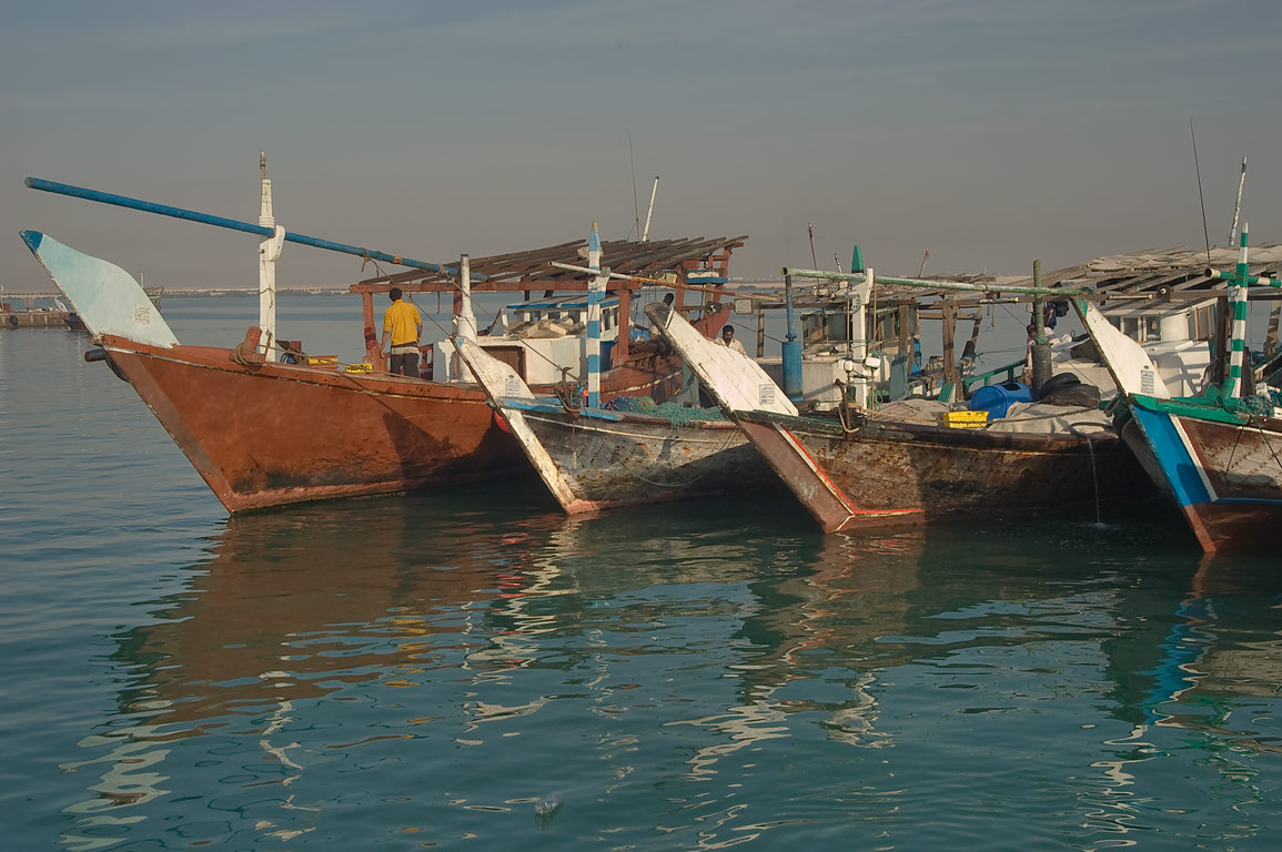 Fishing boats in dhow harbor. Al Khor, Qatar