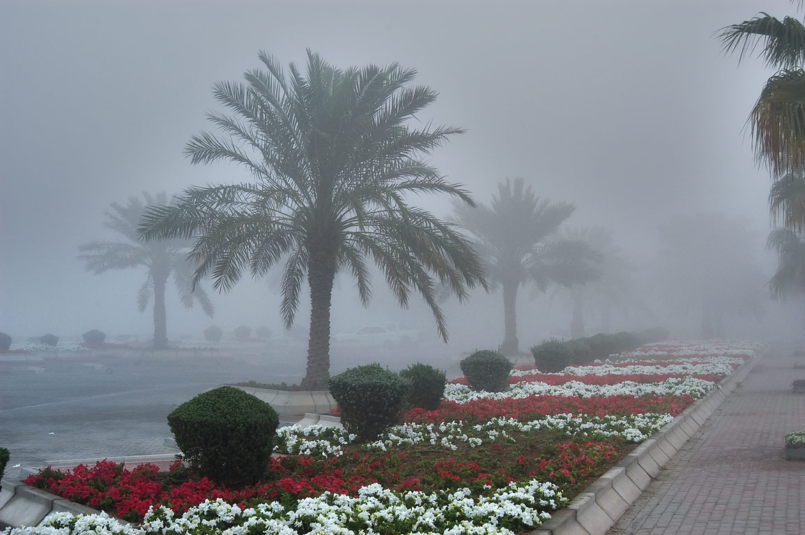 Pedestrian walk of Corniche (waterfront promenade) at morning in fog. Doha, Qatar