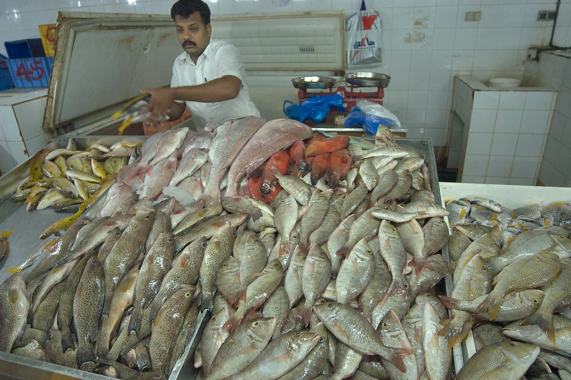 Large masses of hammour and snapper fish in Central Fish Market. Doha, Qatar