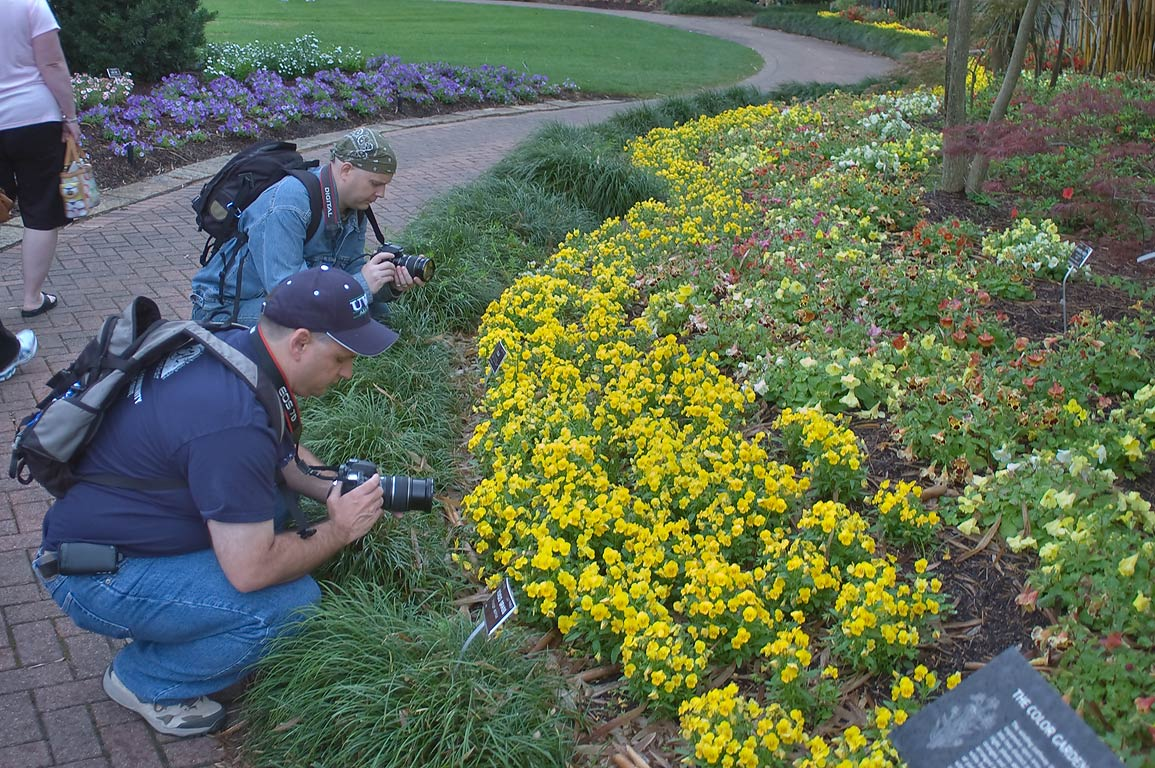 Photographers around a flowerbed in Mercer...Gardens. Humble (Houston area), Texas