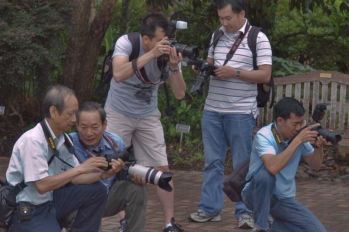 Group of photographers in Mercer Arboretum and...Gardens. Humble (Houston area), Texas