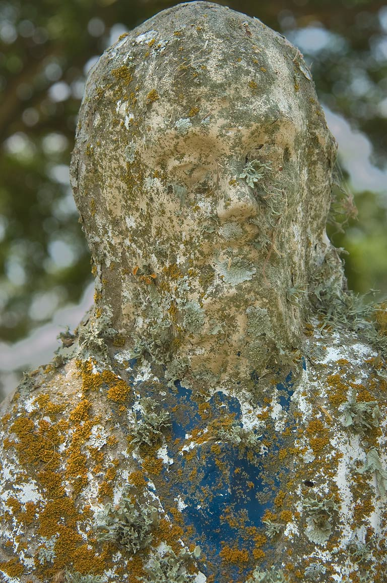 Lichens on a tomb statue of a cemetery at Mission...Port Sullivan, west from Hearne. Texas