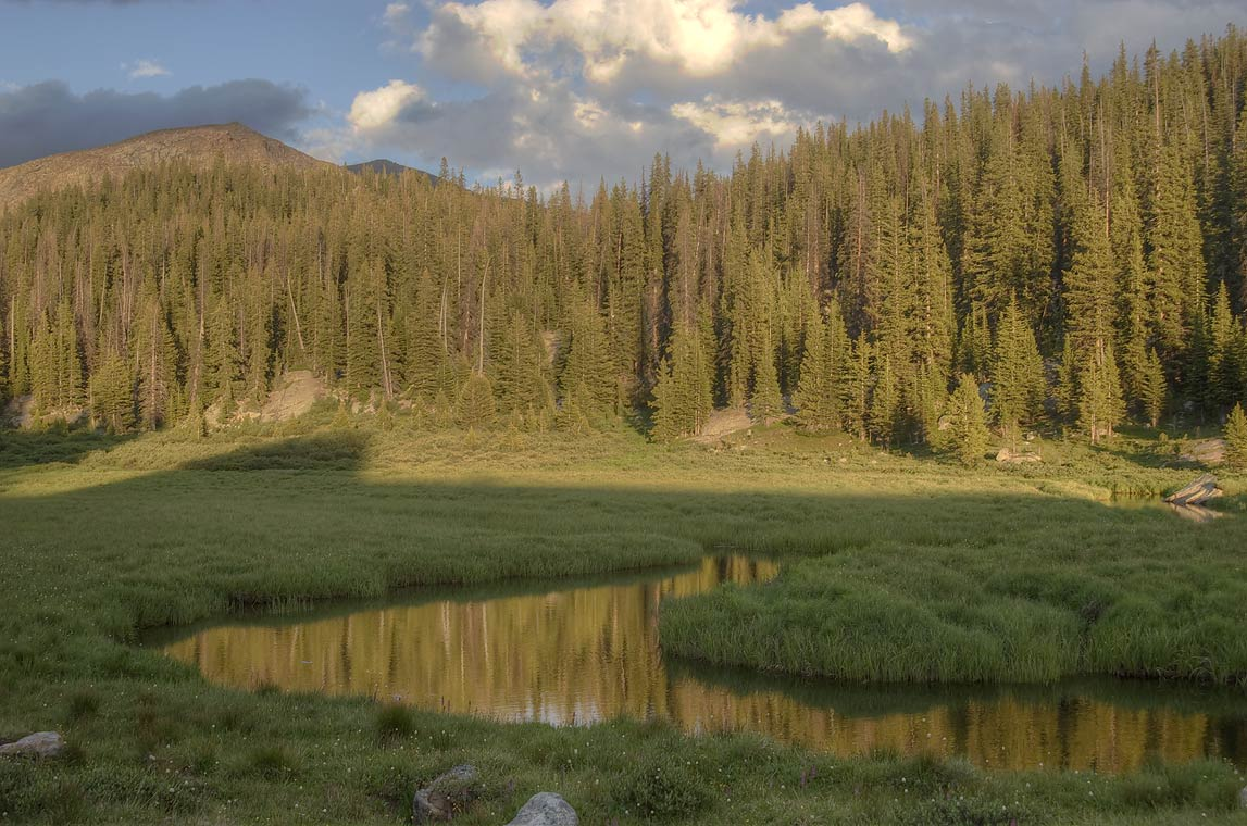 Teensleep Creek in Cloud Peak Wilderness at evening. Wyoming