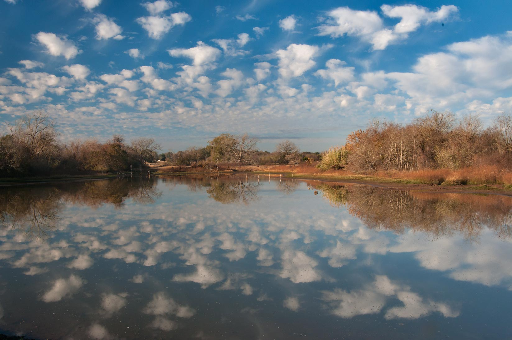 Cloud reflections in a pond in Washington-on-the...State Historic Site. Washington, Texas