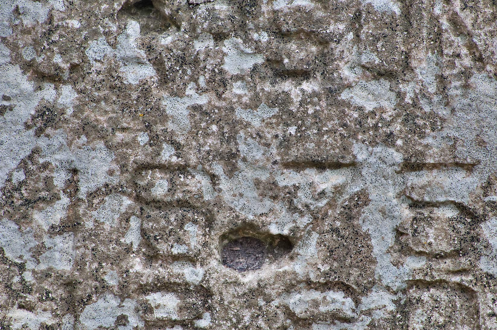 Headstone texture in boonville cemetery bryan texas december 17