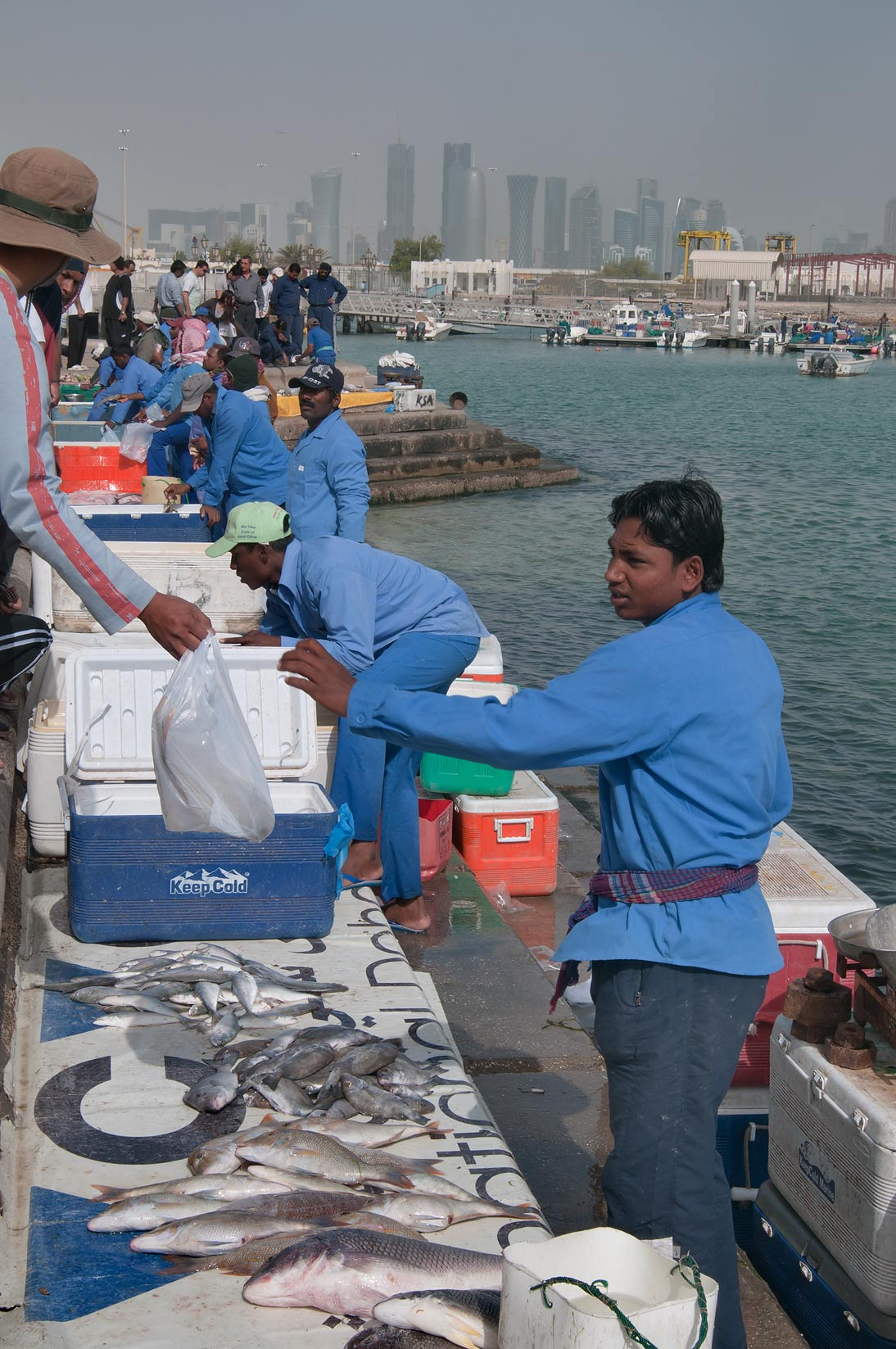 Corniche Fresh Fish Sold Market. Doha, Qatar