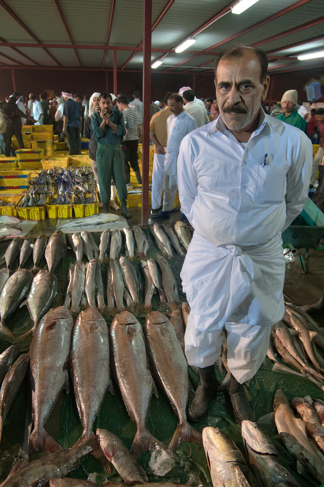 Seller in wholesale Central Fish Market. Doha, Qatar