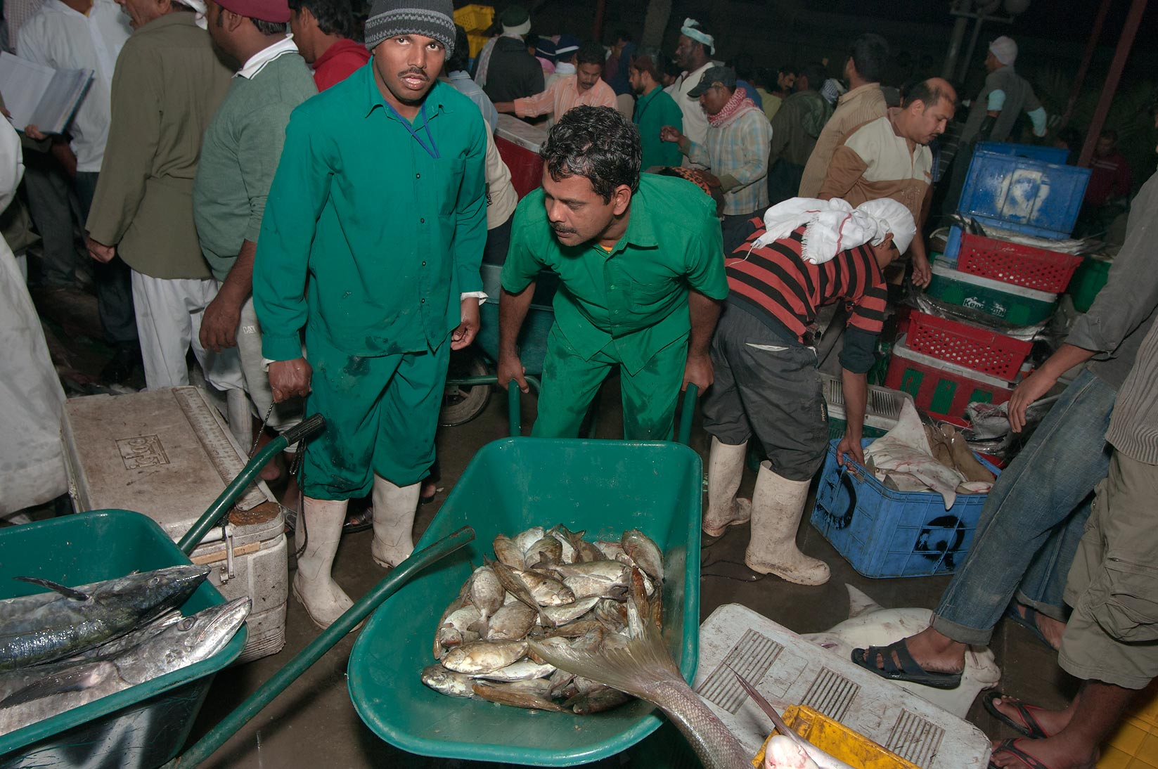 Photo 915 14 worker with a cart carrying fish in for Central fish market