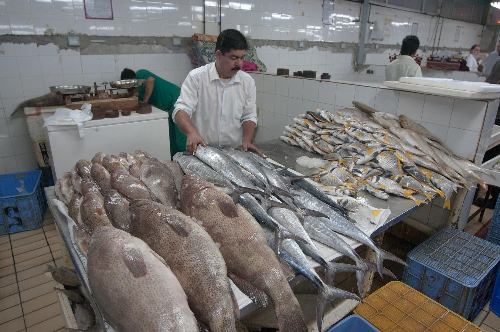 Vendor in Central Fish Market. Doha, Qatar