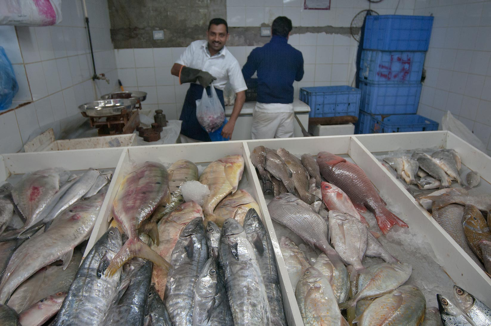 Seller with fish in Central Fish Market. Doha, Qatar
