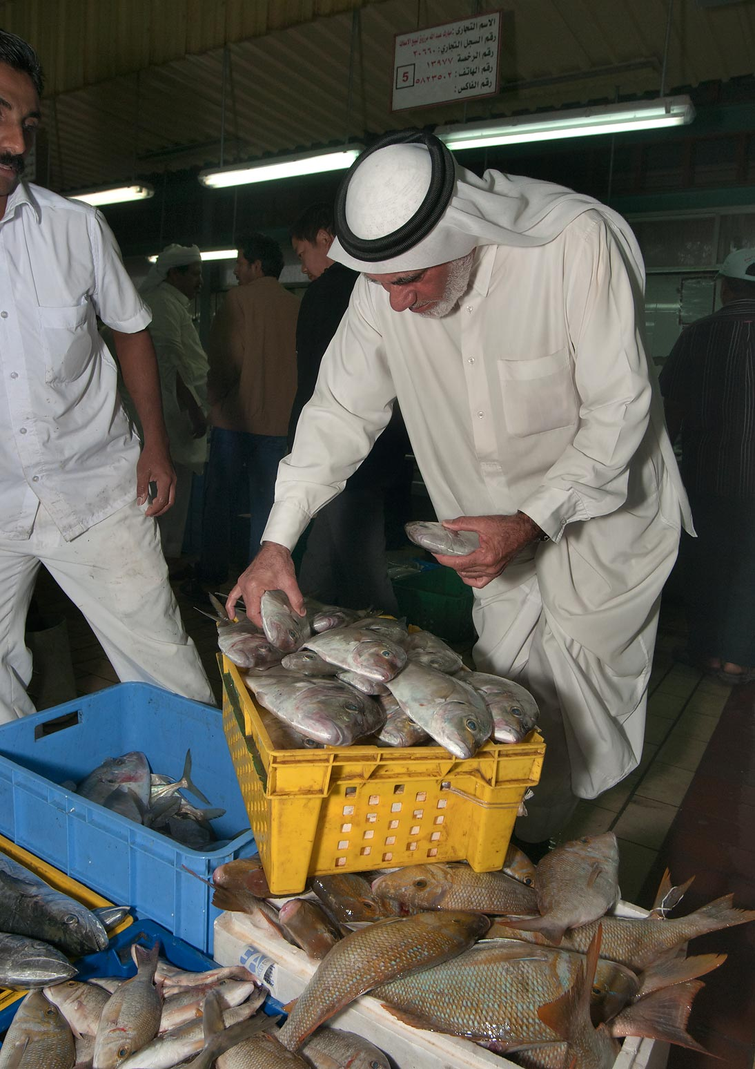 Shopping for fish in Central Fish Market. Doha, Qatar