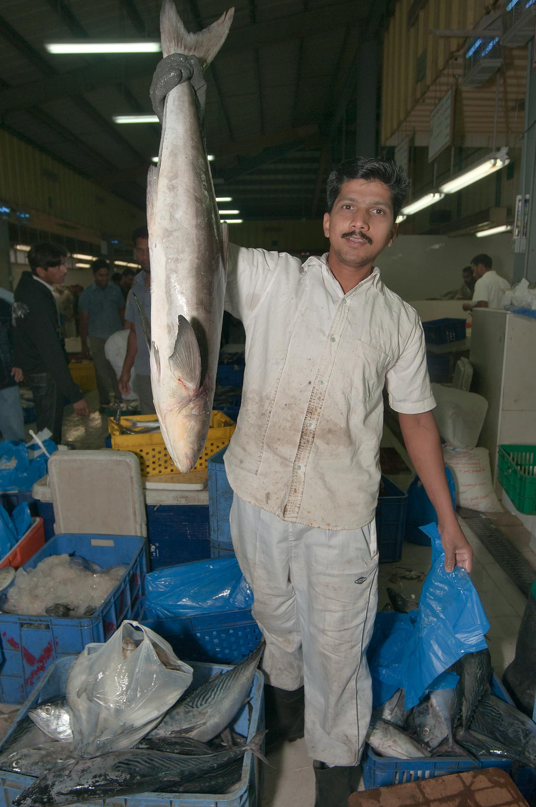 Worker with a fish in Central Fish Market. Doha, Qatar