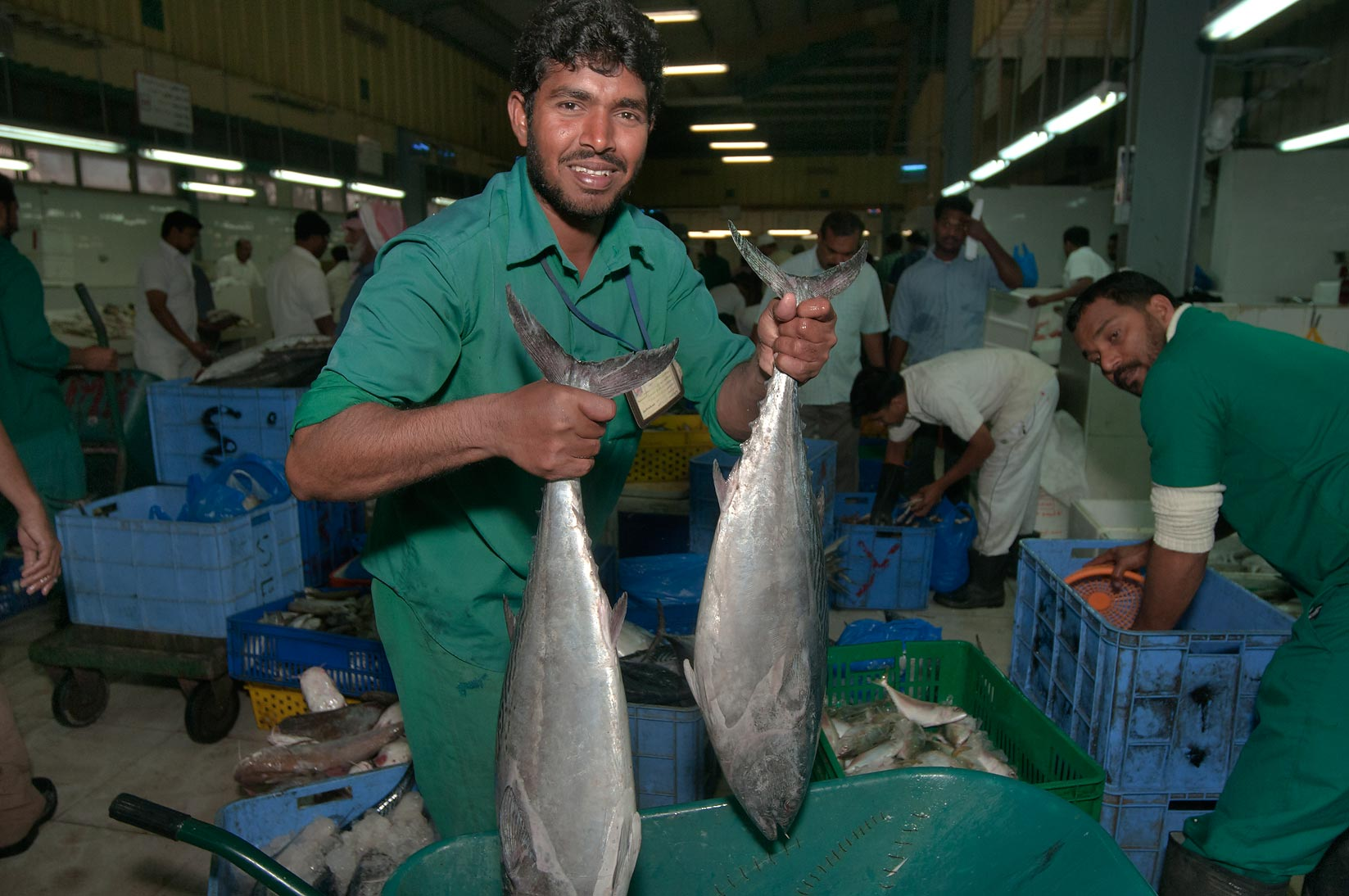 Worker with two tuna fishes in Central Fish Market. Doha, Qatar
